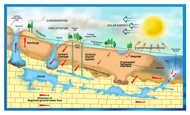 Hydrologic cycle cross section